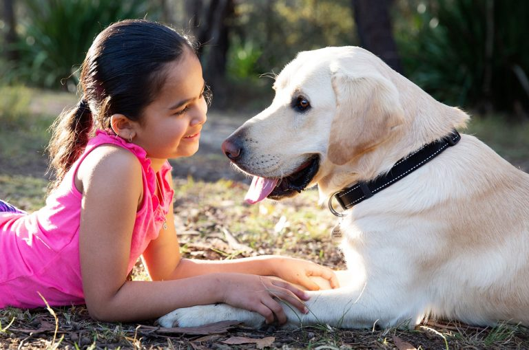 A young child laying down looking into the face of a yellow labrador dog with a smile on their face, They are both outside and are sitting facing each other.