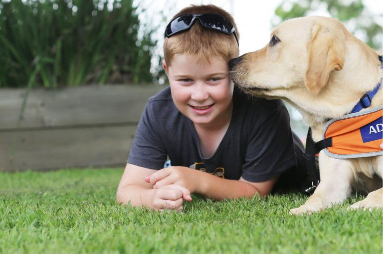 A young child is laying on the grass outside while a yellow labrador dog wearing a Guide Dog in Training jacket licks his face. The young child is smiling at the camera.
